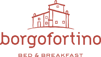 BorgoFortino |   Privacy Policy